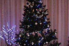 Päkapikkude jõulupidu!
